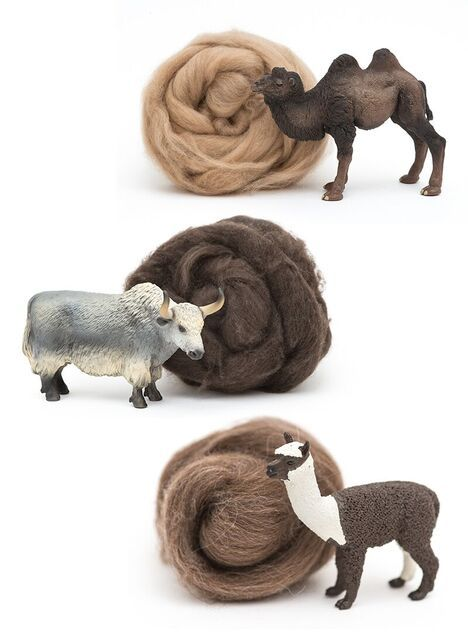 DHG collection is enriched by new wonderful fibers: Super Fine Alpaca in warm natural brown tones, Yak and Camel. They are ideal for felting but also for yarn making.