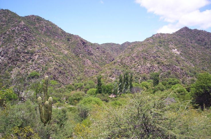 Resultados de la Búsqueda de imágenes de Google de http://upload.wikimedia.org/wikipedia/commons/0/0d/Sierras_de_Valle_F%25C3%25A9rtil,_provincia_de_San_Juan,_Argentina..EAG.jpg
