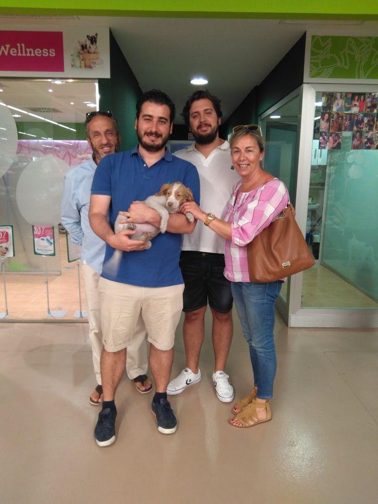 Marley, Adoptado felizmente!!!! Familia encantadora y muy completita dando la oportunidad a uno de nuestros peques. Mil gracias por la adopción!!!!!