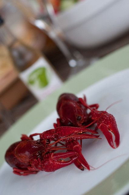 Time to Kräftskiva! A Traditional Swedish Party « Chef Marcus Samuelsson.  Patrice Johnson reflects on that unappreciated delicacy, the crayfish.
