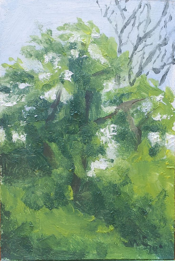 Tree study en Plein air