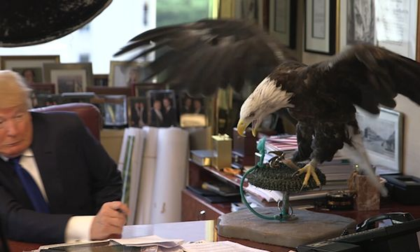 Republican candidate Donald Trump tussles with an American bald eagle during a photoshoot for Time magazine in August