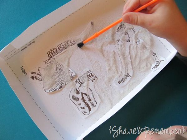 Exploring Fossil Records, How Fossils Are Formed ...