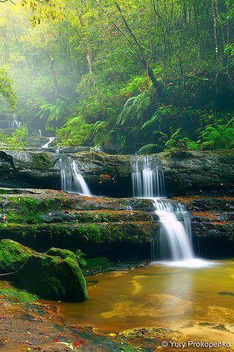 Terrace Falls - Blue Mountains National Park - NSW, Australia