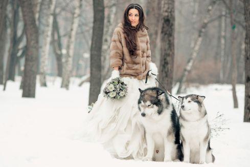Снежная мечта: свадьба Алевтины и Максима - WeddyWood