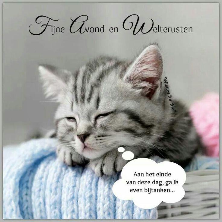 Mooie plaatjes | fijne avond - Goede nacht, Welterusten en ...