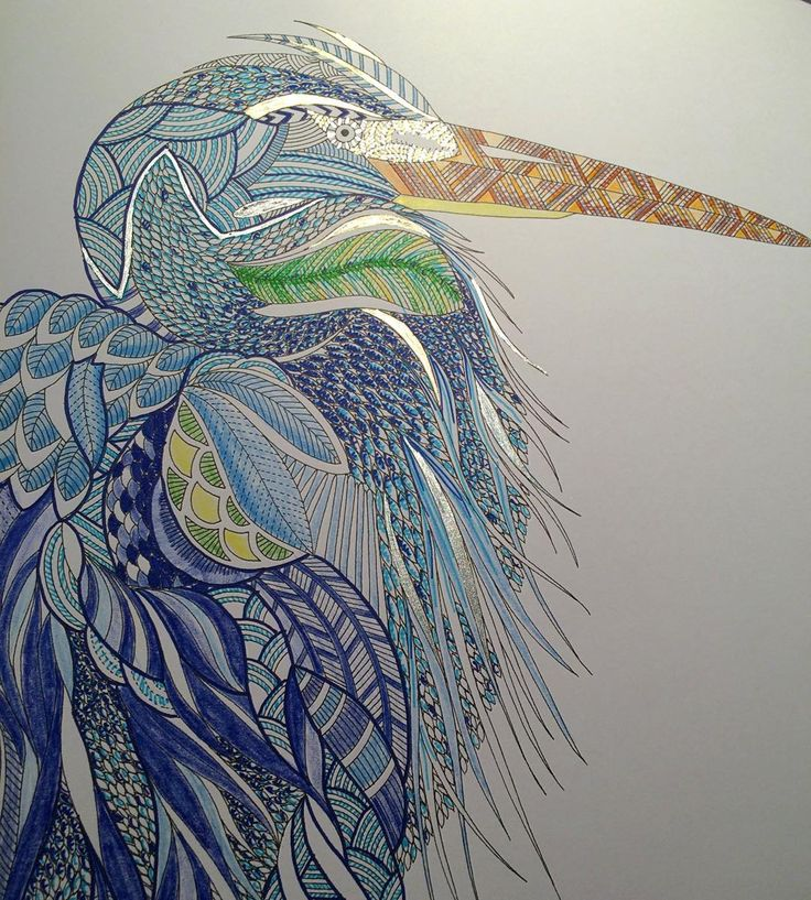Heron Done Milliemarotta Colouring Watercolor IdeasColouringColoring BooksColored PencilsJohanna BasfordAnimal KingdomHeronsHobbiesTropical