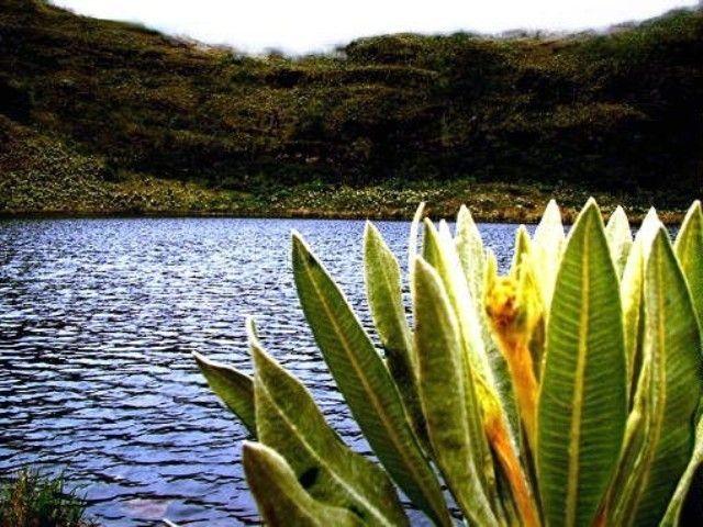 laguna iguaque - Google Search