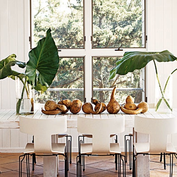 142 Best Tropical Dining Rooms Images On Pinterest