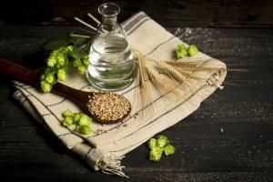Barley Beer Brewed in Mesopotamia, Central Europe and Perhaps China: Ingredients for brewing beer, hops, water, barley