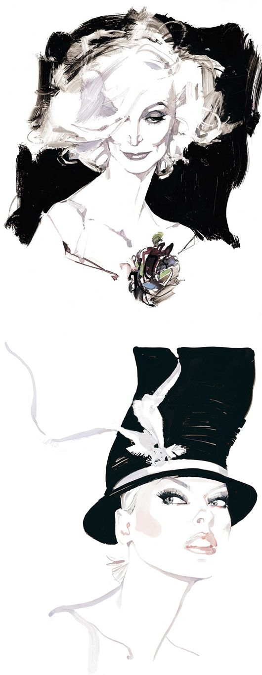 Beautiful illustration by English illustrator David Downton.