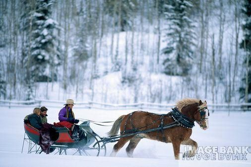 One horse open sleigh... i wanna ride!