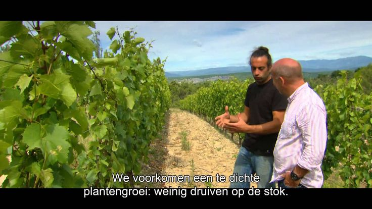 Piet Patron - Cyriel & wijn