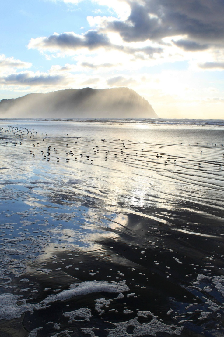 14 best must see in willapa harbor images on pinterest museums seaside or geenschuldenfo Gallery