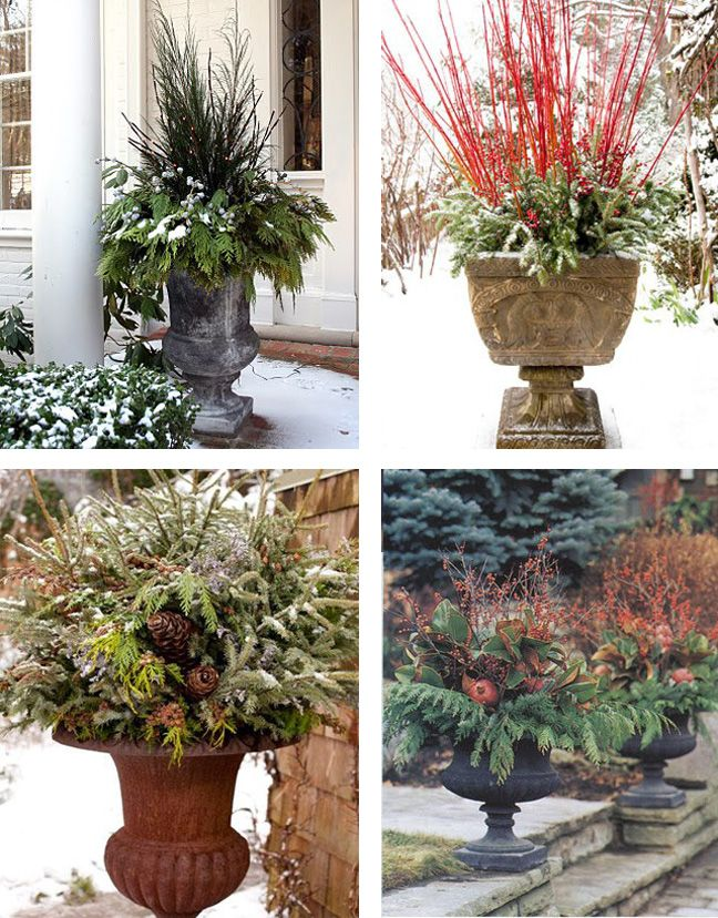 Decorative Urns For Plants 52 Best Winter Urns Images On Pinterest  Christmas Decor
