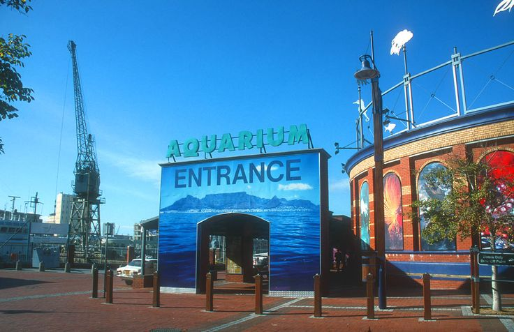 www.sunsafaris.com #Cape #Town #south #africa #aquarium #v #and #a #waterfront #attraction