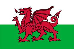 All about St.David's Day celebrated on 1st March