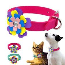 Flower Studded Suede Leather Puppy Cat Pet Dog Collar Soft for Small Medium Dogs