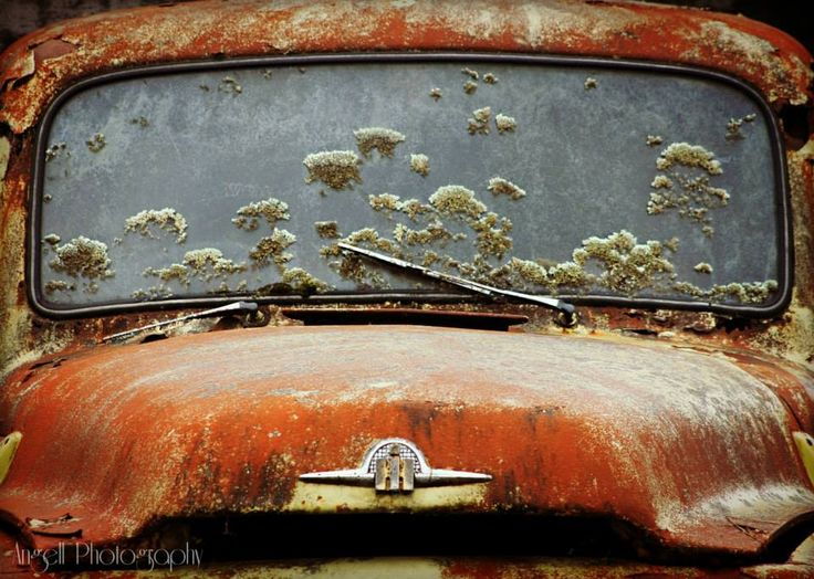 Old Car.  Taken at 'Smash Palace', Horopito, New Zealand.  Taken by Tracie Angell.