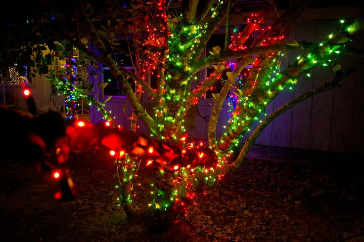 36 Best Red And Green Christmas Lights Images On Pinterest