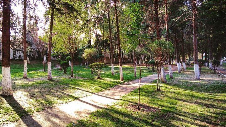 La tarde previa a fin de año / #cdmx #mexico #mexigers #nature #igersmexico http://ift.tt/2imOVI5