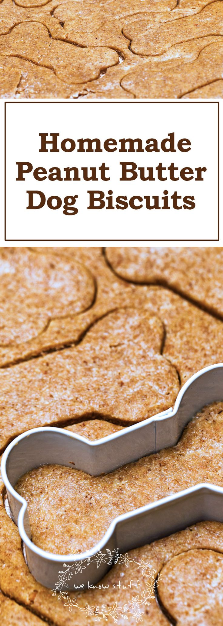 Our dogs go bonkers for all of our homemade dog biscuit recipes. This homemade peanut butter dog biscuit recipe is made with all natural, dog-friendly ingredients like peanut butter and coconut oil from Carrington Farms.