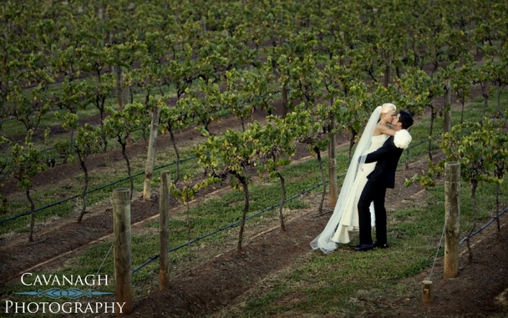 http://www.cavanaghphotography.com/peppers-creek-barrel-room-hunter-valley-wedding/ #wedding #bridal #photography #huntervalley