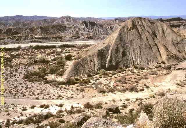 Bioma: Desierto y Semidesierto. Lugar al que corresponde: America del Sur. Problemas ambientales: Sequía.