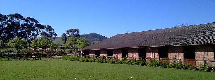 www.albaguestfarm.co.za
