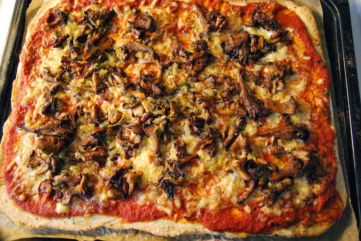 Pizza med kantareller, dill och kumminost