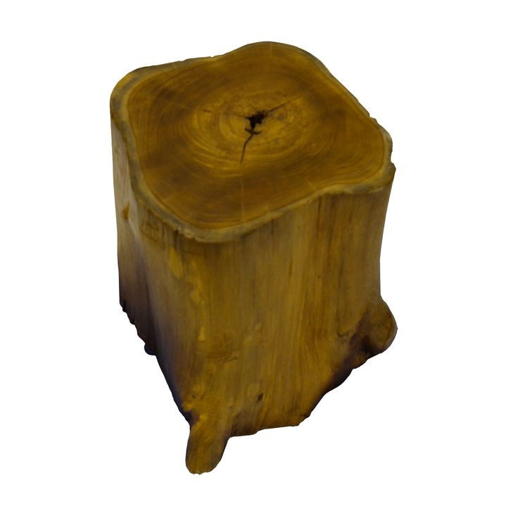 Trunk Stool. Enjoy the natural shape of Trunk Stool. Let share more stories while sitting on it.