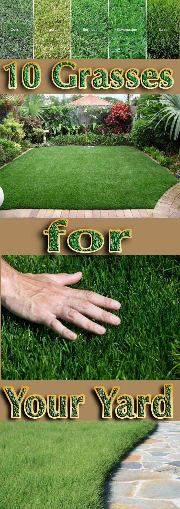 No single grass variety is all things to all landscapes, but each of these grasses has something to recommend it and may be just the grass you need to increase the curb appeal of your home, cover an embankment without needing weekly mowing in summer, or spruce up a tree lawn that needs a sturdy grass that can stand up to foot traffic... #lawn #grass #lawncare