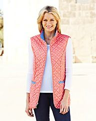 Reversible Gilet I have this to