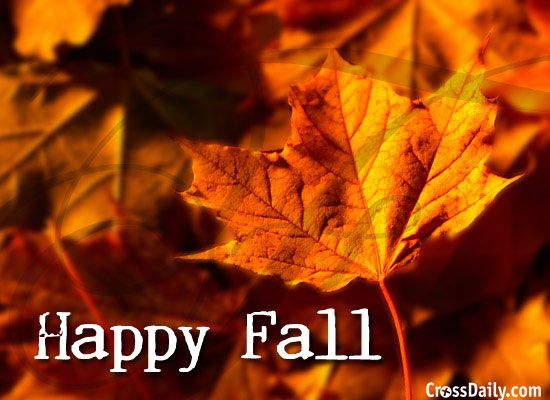 347 Best Fall And Autumn Images On Pinterest | Autumn Cozy, Autumn Harvest  And Crafts