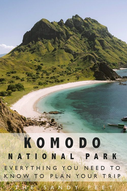 Komodo National Park: Everything You Need To Know To Plan Your Trip