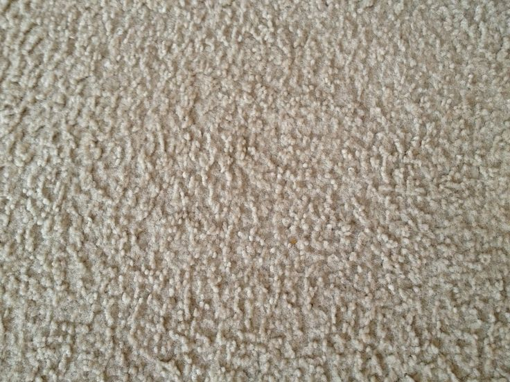 To Remove Colored Stains To The Carpet That Are Sucker Or