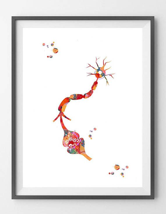 Neuron and Receptor Watercolor Print Brain Synapse print