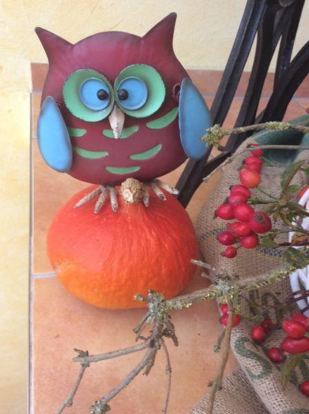 Kaefers Herbstdeko mit Eule