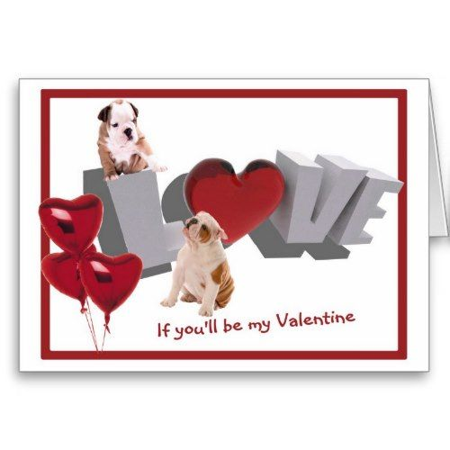 valentine's day puppy clothes