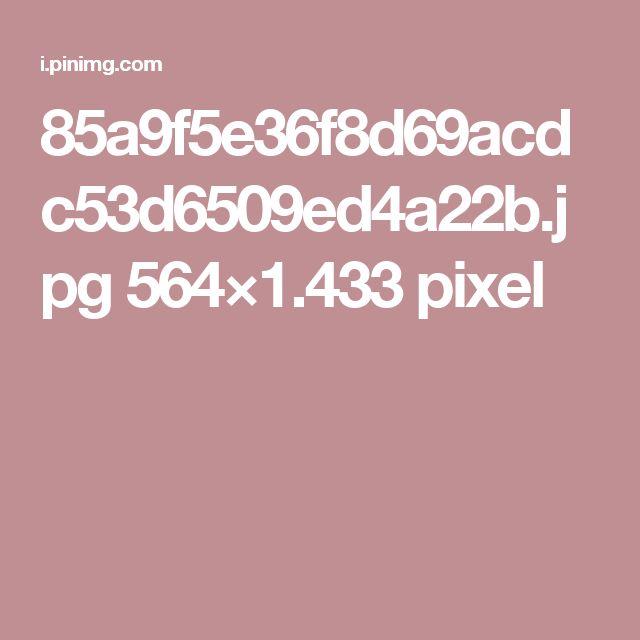 85a9f5e36f8d69acdc53d6509ed4a22b.jpg 564×1.433 pixel