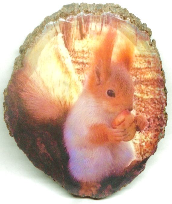 Rustic Photo Little Squirrel Rustic Wood от DoctorWoodcraft My shop on ETSY: www.etsy.com/shop/DoctorWoodcraft