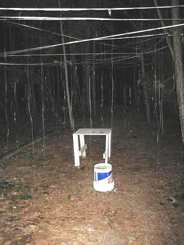 1000 haunted trail ideas on pinterest haunted maze for Haunted woods ideas