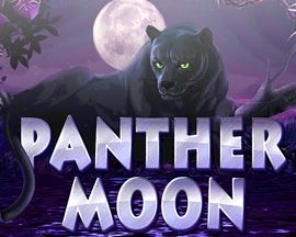 Have more wins on the stunning free game spins! With the black cat that doesn't fall flat! Get attuned at Panther Moon!