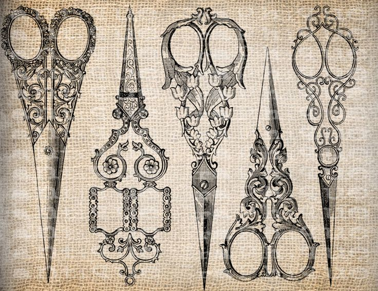 Antique Sewing Scissors Ornate Sew Seamstress Illustration ...