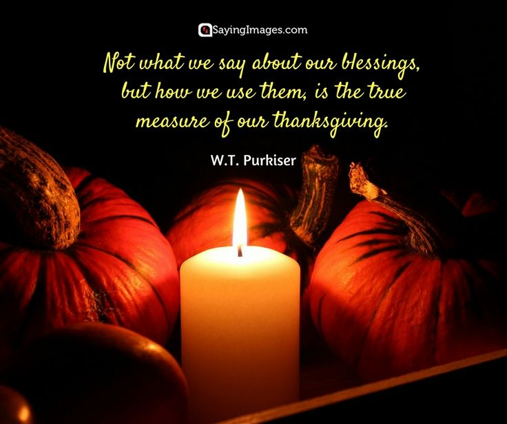Best Thanksgiving Quotes For Friends: Best 25+ Thanksgiving Quotes Family Ideas On Pinterest
