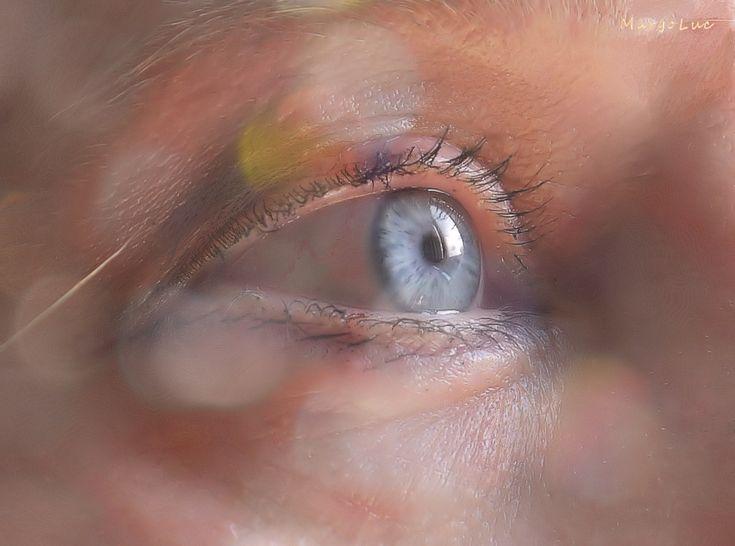 https://flic.kr/p/TkkZ4J | Blue (Eye's) Monday ...:) | For Macro Mondays Theme: Eye(s) Have a great week, my friends!:) HMM!