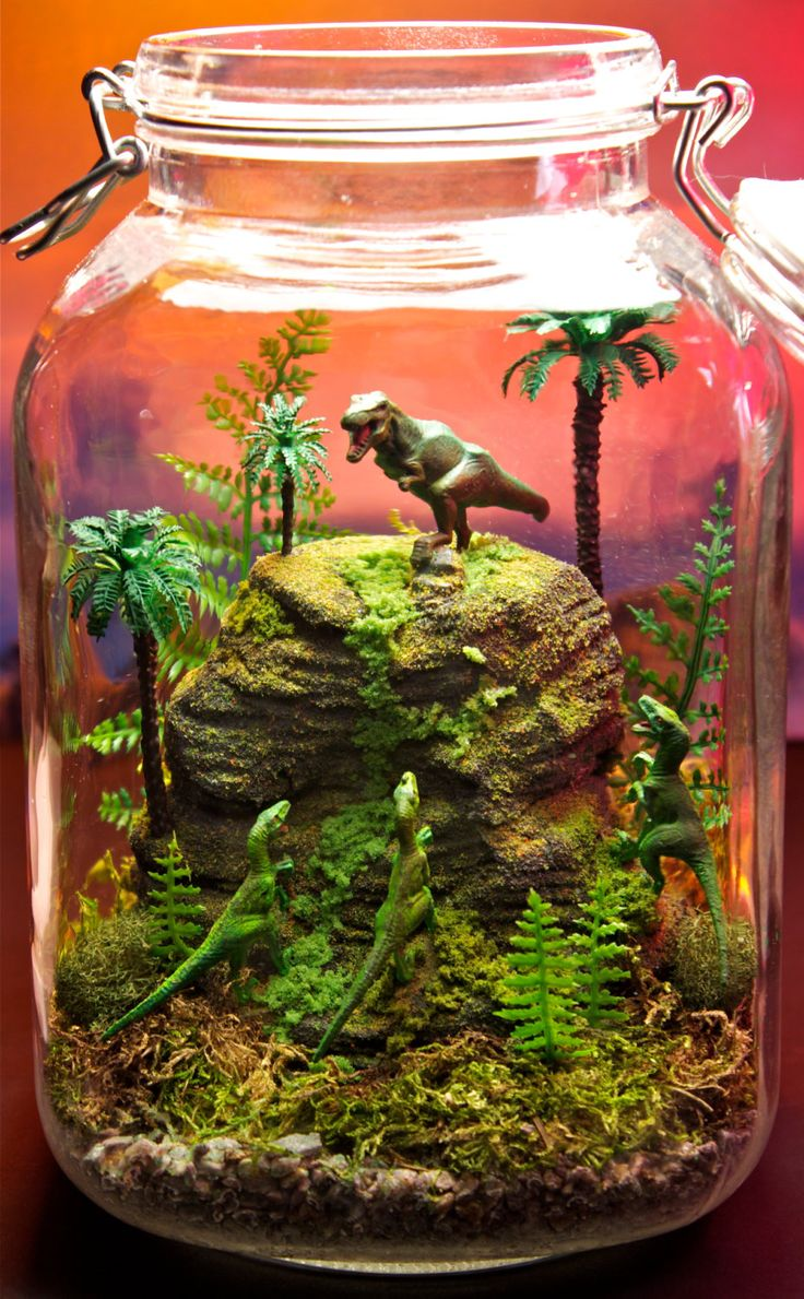 Dinosaur terrarium! Must show our 2nd grade teachers!