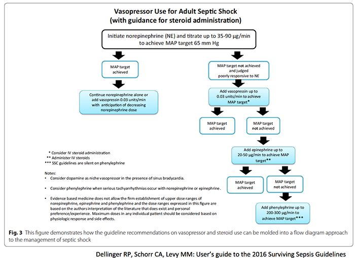 Vasopressors for septic shock