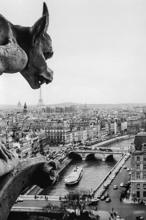 vintagegal:  Robert Doisneau, Gargoyles of Notre Dame, April 1969 (via)