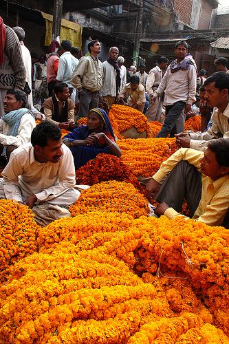 Marigold garland sellers in India. Got these everywhere I went in India! Take me back
